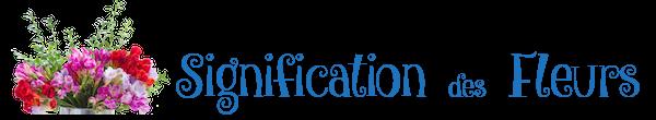 Signification Des Fleurs Logo